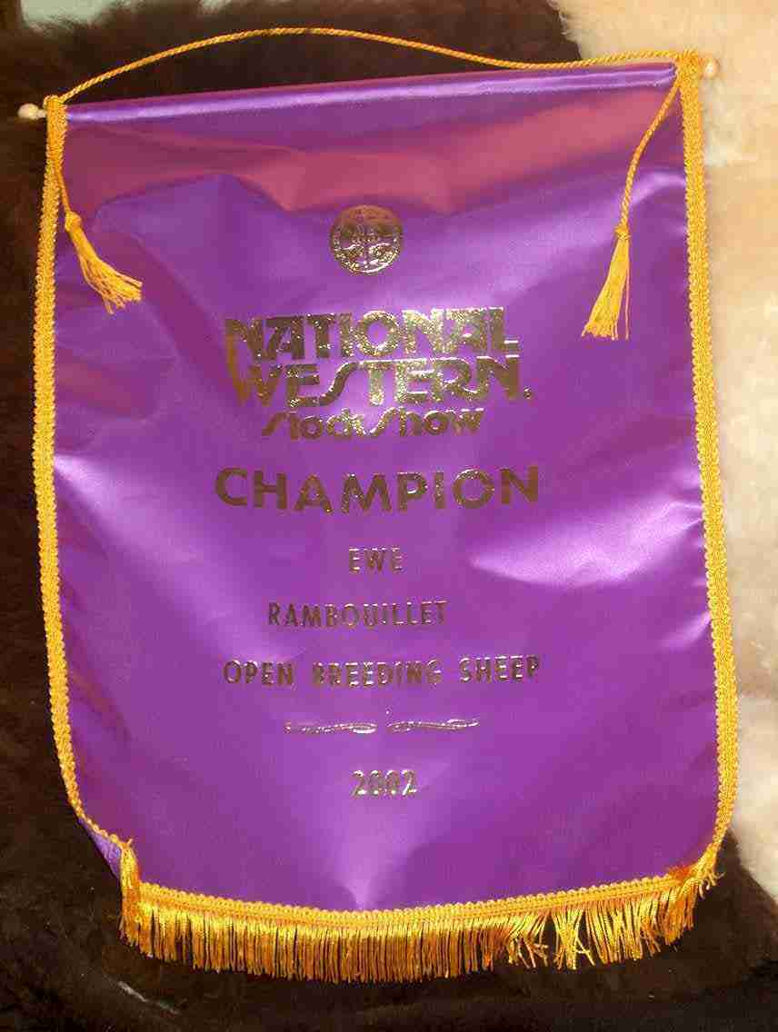 Champ Ribbon